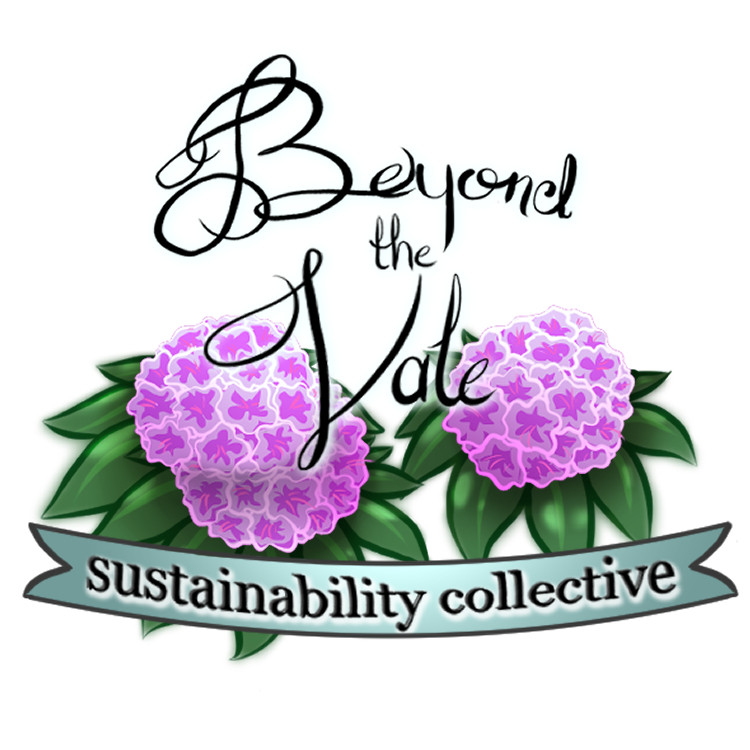 Beyond the Vale Sustainability Collective