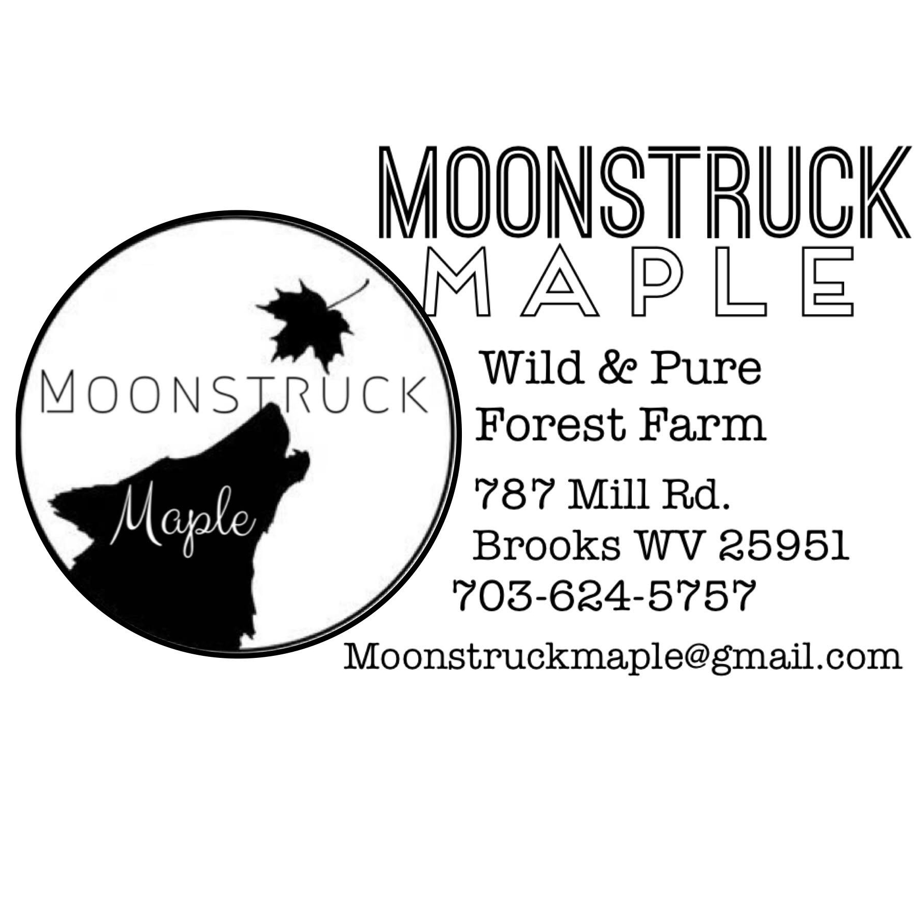 Moonstruck Maple