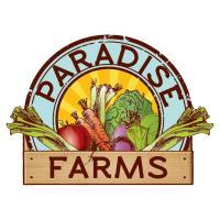 Paradise Farm - KISRA