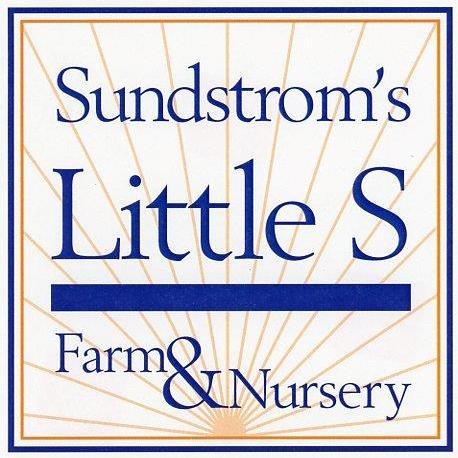 Sundstrom's Little S