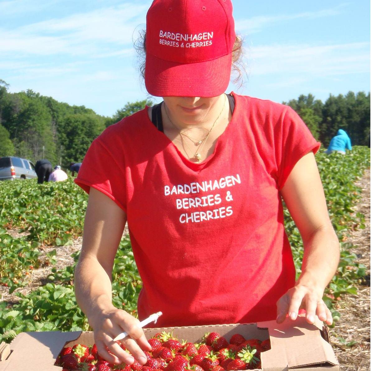 Bardenhagen Berries/Homestead Hill CSA