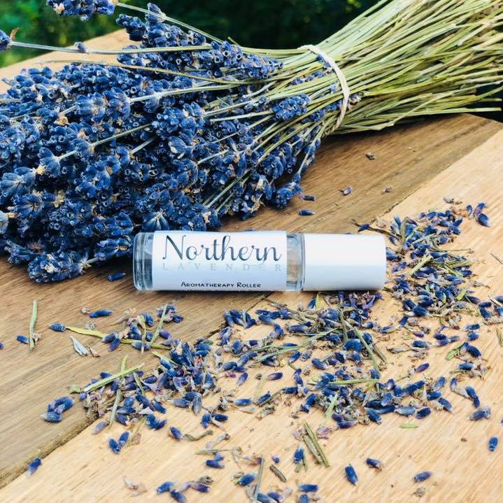 Northern Lavender