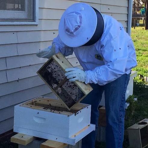 Wandering Bee Apiaries