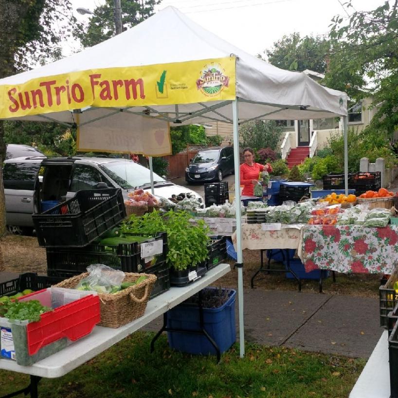 SunTrio Farms