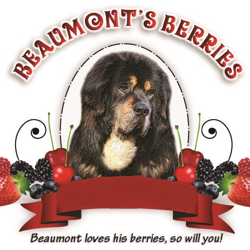 Beaumont's Berries