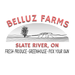 Belluz Farms