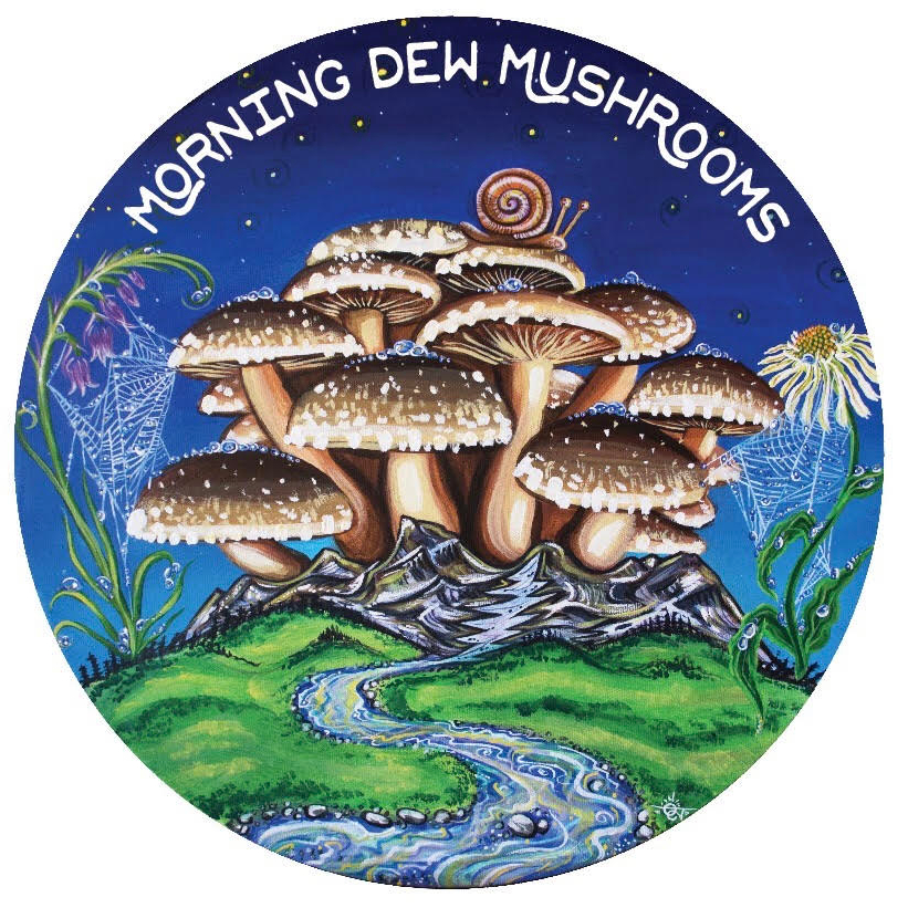 Morning Dew Mushrooms