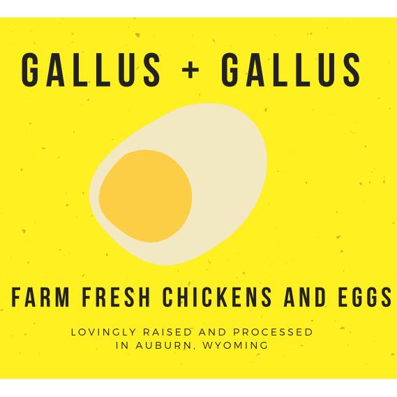Gallus + Gallus