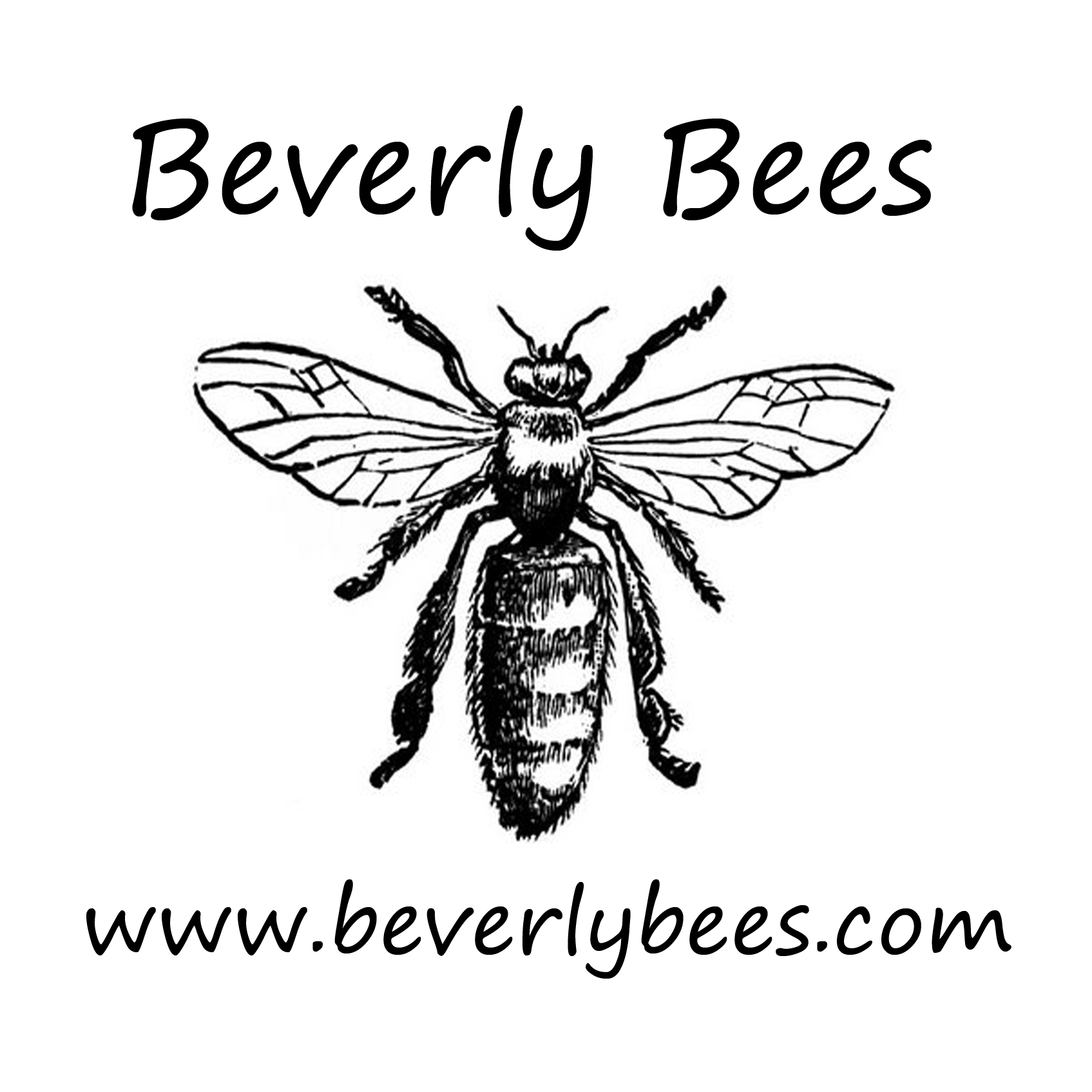 Beverly Bees
