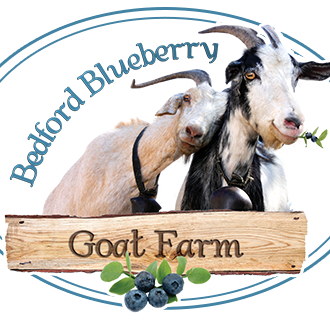 Bedford Blueberry Goat Farms