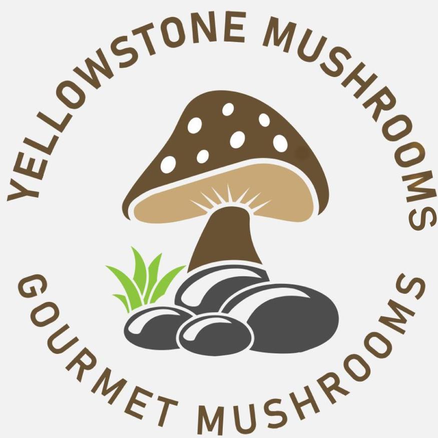 Yellowstone Mushrooms